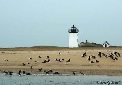 Cape Cod Provincetown 11/2-11/9/19  1 Week Fall Beach Rental Vacation Taxes Incl