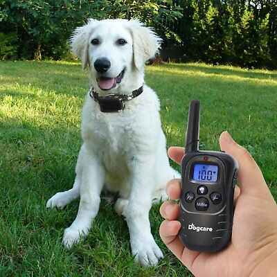 Petrainer PET998DRB1 Dog Training Collar Rechargeable and Rainproof 330 yd