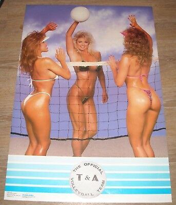 ROLLED 1987 The OFFICIAL T & A VOLLEYBALL TEAM PIN UP POSTER BIKINI BABES # 2438