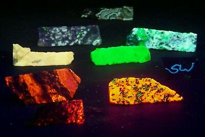 Fluorescent 8 Lot LW SW w  Chalcedony & Magnesite  Willemite & Calcite  Agate