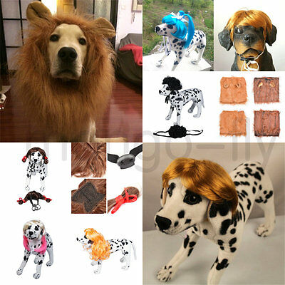 Pet Dog Costume Lion Mane Straight Curly Wig Hair Cosplay Fancy Dress up w/ Ears