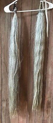 """2 Gray 35-36"""" Horse Hair Tail Extension, With Padded Zipper Bag"""