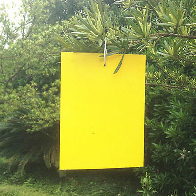 10/20Pcs Yellow Sticky Glue paper Insect Trap Catcher Killer Fly Aphids Wasp Lot