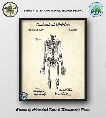 1911 Anatomical Skeleton Patent Print 2  -  Skeleton Patent