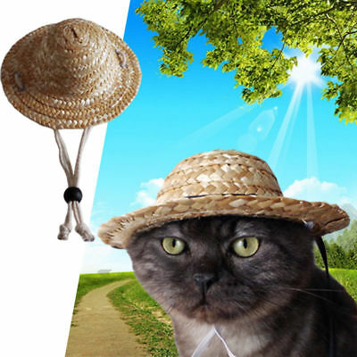 Funny Straw Sombrero Hat Pet Dog Cat Party Costume Accessory Adjustable Buckle
