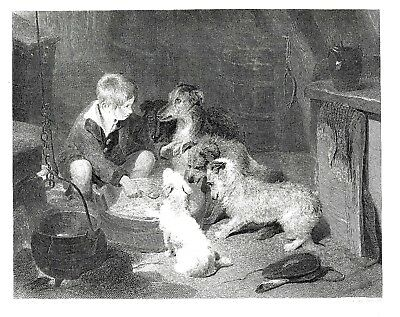 """The Breakfast Party"" Engraving by E. Finden after Sir Edwin Landseer - c1850"