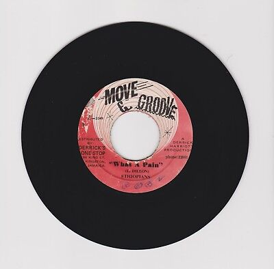 "Move & Groove/ What A Pain - Ethiopians (71 Reggae Roots 7"")"