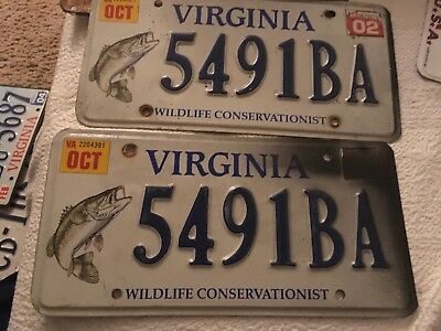 2002 Virginia handicap license plate 5491BA pair