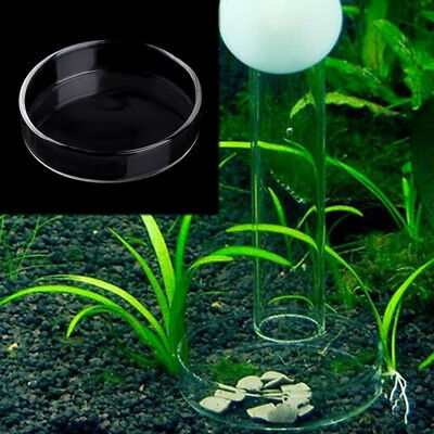 Aquarium Fish Tank Clear Acrylic Shrimp Feeding Food Dish Feeder Tray Container