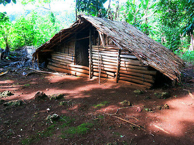 Traditional food hut for storing yam, taro and other food crops,Solomon Islands