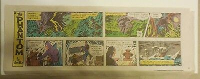 """(46) """"The Phantom"""" Sundays by Lee Falk from 2000 Near Complete Year ! Quarters"""