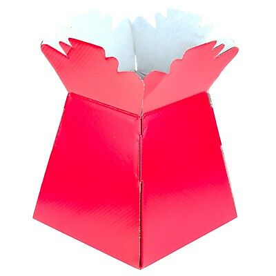 Cerise - Living Vases Florist Bouquet Box Flower Plant Aqua Sweet Gift Boxes