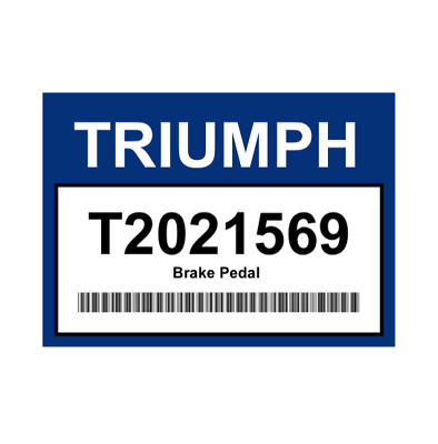 Triumph Motorcycles T2021569 Speed Triple R/S/RS Brake Pedal