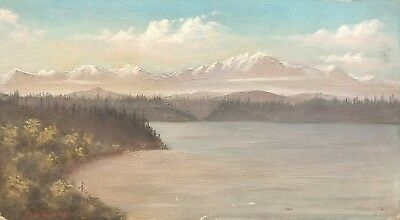 Painting By M. Williams Oil mountains, ocean, trees clouds