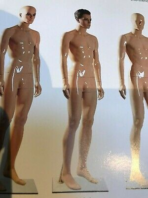 MALE MANNEQUIN NEW PRICE WITH 10% OFF at £53.99 FREE DELIVERY (mainland uk only)