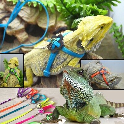 Bearded Dragon Reptile Lizard Gecko Critters Adjustable Harness Leash Keep Rope