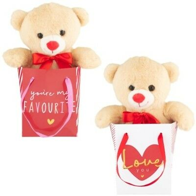 Valentines Day Gift Cute Soft Push Teddy Bear in a Bag Special Someone's 17cm.