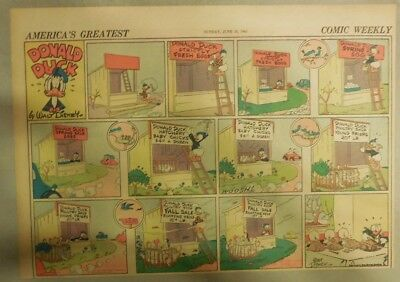 Donald Duck Sunday Page by Walt Disney from 6/15/1941 Half Page Size