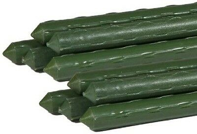 Green Plastic Coated Light Steel Supports Bamboo Plant Supports Various Lengths