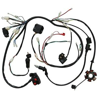 Wiring Harness Gy6 150cc 125cc Electrics Buggy Scooter Wire Loom