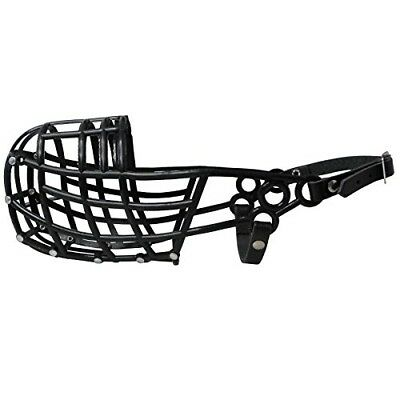 Don Pare 107 greyhound racing muzzle in Black Lurcher Sloughi Saluki dogs
