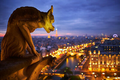 Notre Dame Cathedral Gargoyle Paris at Night Photo Art Print Poster 18x12 inch