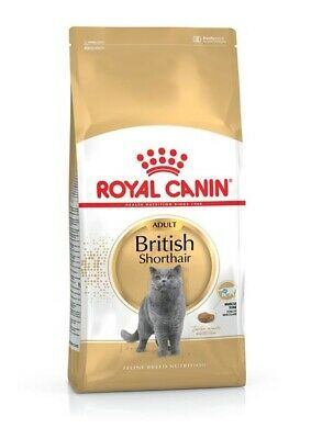 10kg Royal Canin British Shorthair Adult BLITZVERSAND von Bravam 3182550756464
