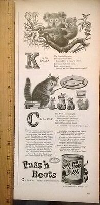 Cat Food Ad