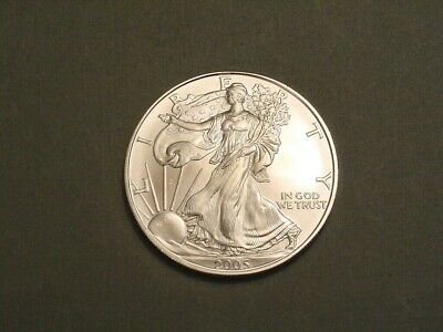 2005 American Eagle 1 Ounce .999 Silver One Dollar~US Mint Coin~Ungraded Bullion