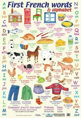 French Words Poster Alphabet 40x60cm