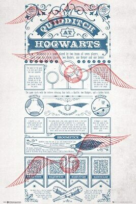 Harry Potter Quidditch At Hogwarts Maxi Poster 61 x 91,5 cm