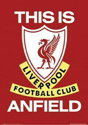 Liverpool FC This is Anfield Liverpool Football Club Maxi Poster 61 x 91,5 cm