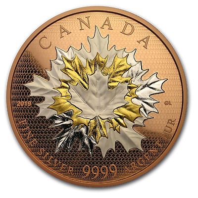 2019 Canada 5 oz Silver Maple Leaves in Motion Rose Gold - SKU#185956