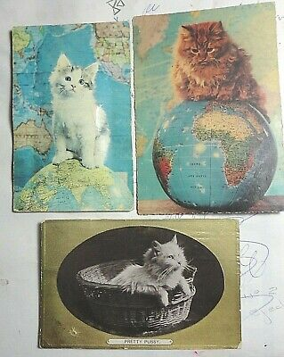 Vintage 3 Postcards Of Cats -1 With Squeaker