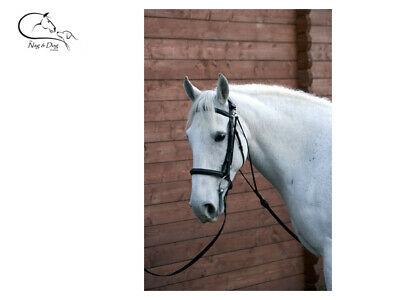 HY LEATHER CHAMBON Training Aid Lunge Breaking Black COB/FULL Free Delivery