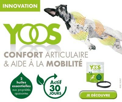 Collier Confort Articulaire Yoos Pour Chien Taille ML