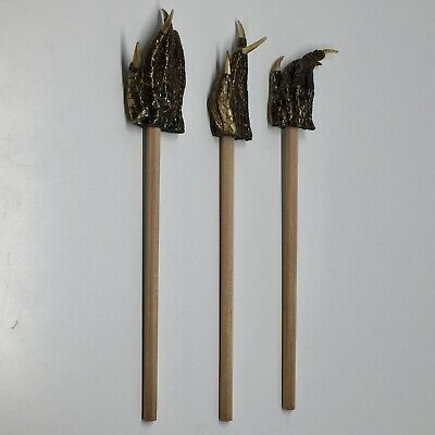 American Alligator Foot Pencil Backscratcher Set of 3 Collectible Taxidermy #3