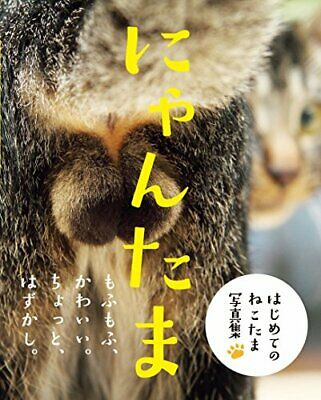 Picture Book NYAN-TAMA Cat Testicles Male Cats Furry Balls