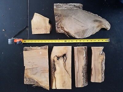 Apple wood scrap piece lot for DIY projects or meat smoking. Lot #10