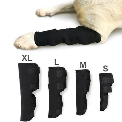 Dog knee support leg protector hock brace rear joint therapeutic pet wrap str ME