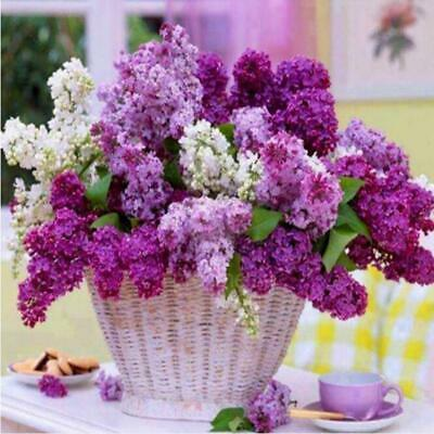 Flower Basket Lavender Counted Cross Stitch Kit Cross-Stitch Hand Embroidery JJ