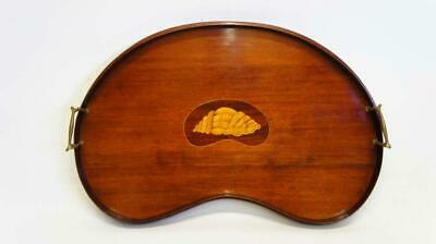 Fine Edwardian kidney  shaped Mahogany butlers or drinks tray 56 cm x 32 cm