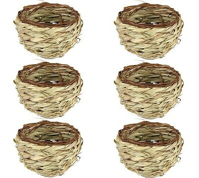 Pet Ting Grass Deep Nest Pan 11cm opening for finch canary budgie small birds X6