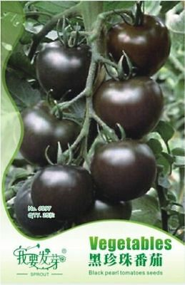 25 Black Vegetable Tomato Giant Tree Seeds Organic Heirloom Tasty Home Gardening