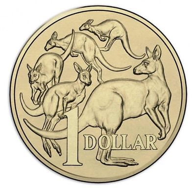 2017 $1 UNC Australian 1 X (one dollar) Mob Of Roos MOR SCARCE Coin EX-Mint Bag