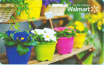 Walmart POTTED FLOWERS GIFT CARD FROM CANADA BILINGUAL NO CASH VALUE !