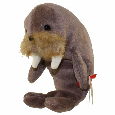 TY Beanie Baby - JOLLY the Walrus (7 inch) - MWMTs Stuffed Animal Toy 261a5abd037d
