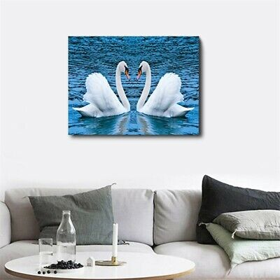 Swans Couple On Lake Canvas Wall Art Picture Oil Painting HD Modern Home Decor