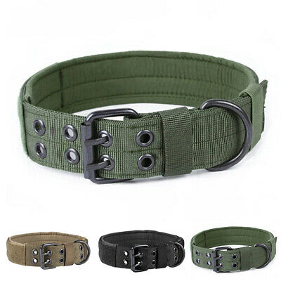 Dog collar Elastic straps Military Tactical Training Leash With Metal Buckle