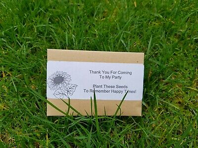 Sunflower Seeds Thank You Birthday Party Bag Filler x5